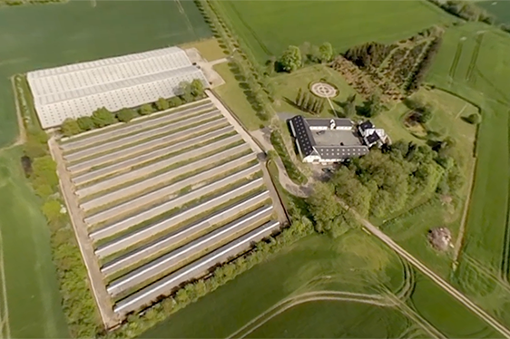 VIDEO: Inside a Mink Farm in 360°