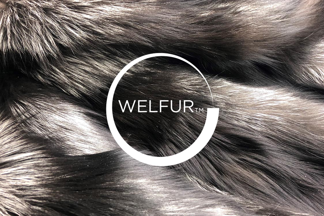 The European Fashion Industry buys WelFur Certified pelts