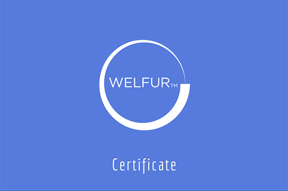 21 Fur Farms Failed to Obtain WelFur Certificate