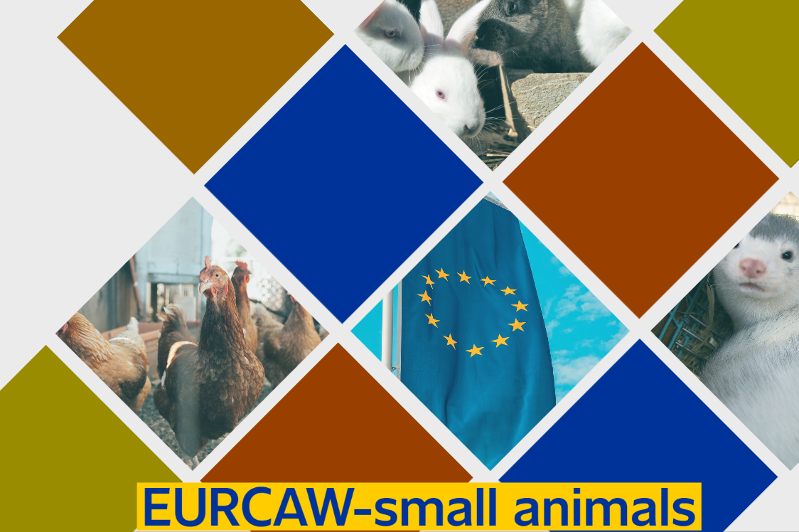 EURCAW-Small Animals is open: WelFur to play a role