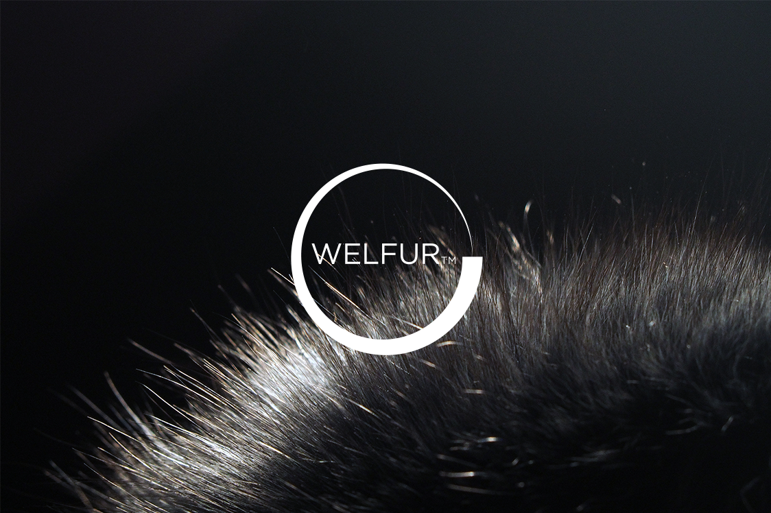 LVMH Hits The 100% Target for Certified Mink, Fox and Finnraccoon Fur
